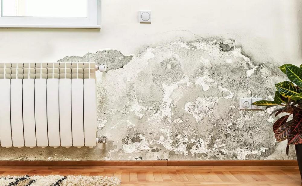 Les problèmes d'humidité dans les pièces de la maison, de véritables casse-têtes